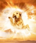 "Dude, Dudette. DogGod... whatever works for your ""higher power"""