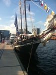 The Wolf, docked at Sailabration, was unmistakable